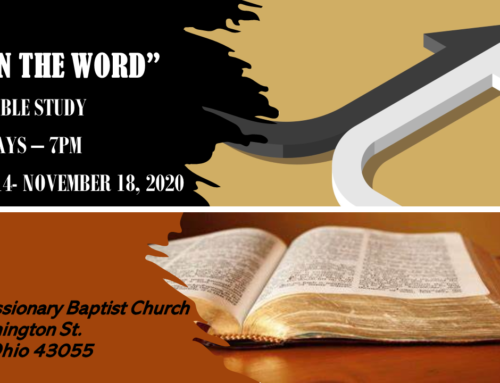 New Bible Study-Live In the Word – Starting Oct. 14!