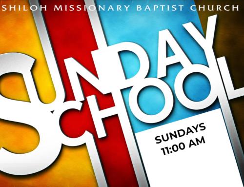 Sunday School Online for All Starting June 20!
